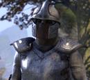 Mercenaire des Dagues