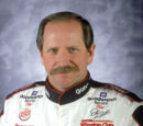Dale Earnhardt Survives