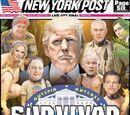 Survivor in popular culture