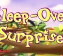 Sleep-Over Surprises