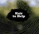 Die Haar-Krise (Episode)