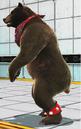 Tekken Tag Tournament 2 Kuma P1 Outfit.png