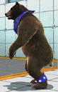 Tekken Tag Tournament 2 Kuma P2 Outfit.png