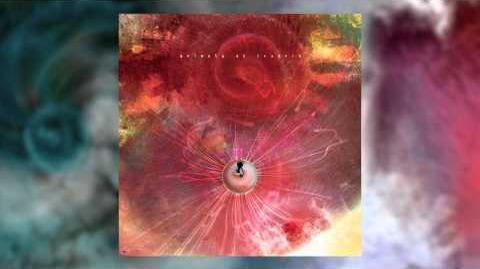 ANIMALS AS LEADERS - Another Year