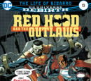 Red Hood and the Outlaws Vol.2 13