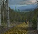 Route de briques jaunes