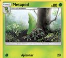 Metapod (Sombras Ardientes TCG)