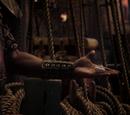 Enchanted Seashell/Gallery