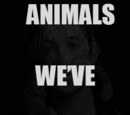 Animals We've Become