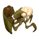 Shieldbug.png