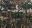 Jardín Botánico Wayne