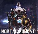 Mortal Kombat vs Injustice