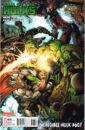 Incredible Hulk Vol 1 607 Second Printing Variant.jpg