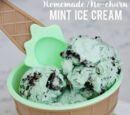 How To Make Mint Oreo Ice-Cream