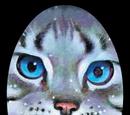 Gatos del Clan del Río