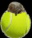 TennisBallFan.png