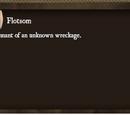 Finding The Flotsam