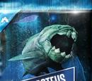 Aquatic Creature-Specific Pack/JW: TG
