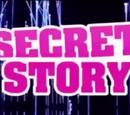 Secret Story France 10