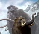 Młody mamut