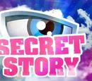 Secret Story France 11