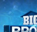 Big Brother 20 (US)
