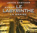 Prequel : La Braise (livre)