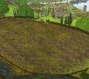 Dews gamla paddock