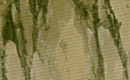 Kage Outfits.png