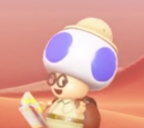 Hint Toad