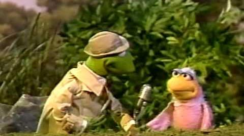 Sesame Street News Flash - They Live in Different Places...