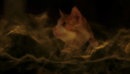 MTX 109-113-Mr. Snuggly.png