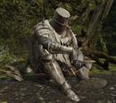 Caballero de Heide