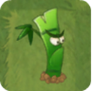 Bamboo Brother2.png