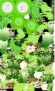 ATLASES PLANTSUGARCANE 1536 00 PTX.png