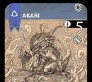 Akari - Inv Fronteras Nº 41