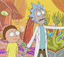 School of Rick