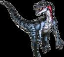 Ultraraptor