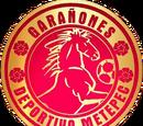 Deportivo Metepec