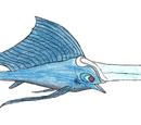 Broadswordfish