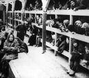 Holocaustals