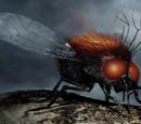 Morgai Flies