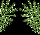 PalmClan