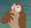 Owl (Little Bear)