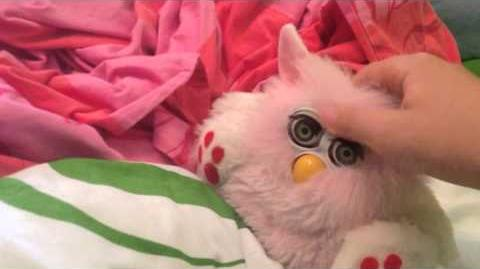 Purby (Furby Fake)