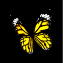 Butterfly topper icon.png