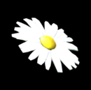 Flower - Daisy antenna icon.png