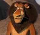 Zuba the Lion