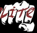 Elite Six (Tierra-617)