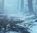 Frosty Backwoods